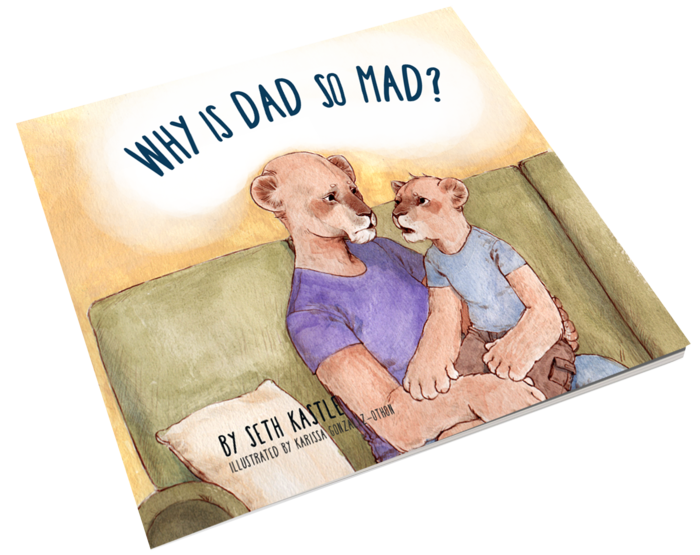 Why Is Dad So Mad by Seth Kastle
